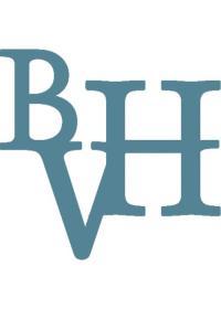bvh-rect.jpg